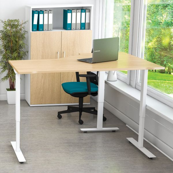 Freedom Lite Stand/Sit New Radial Desk