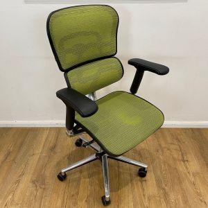 Ergohuman Green Mesh Chair